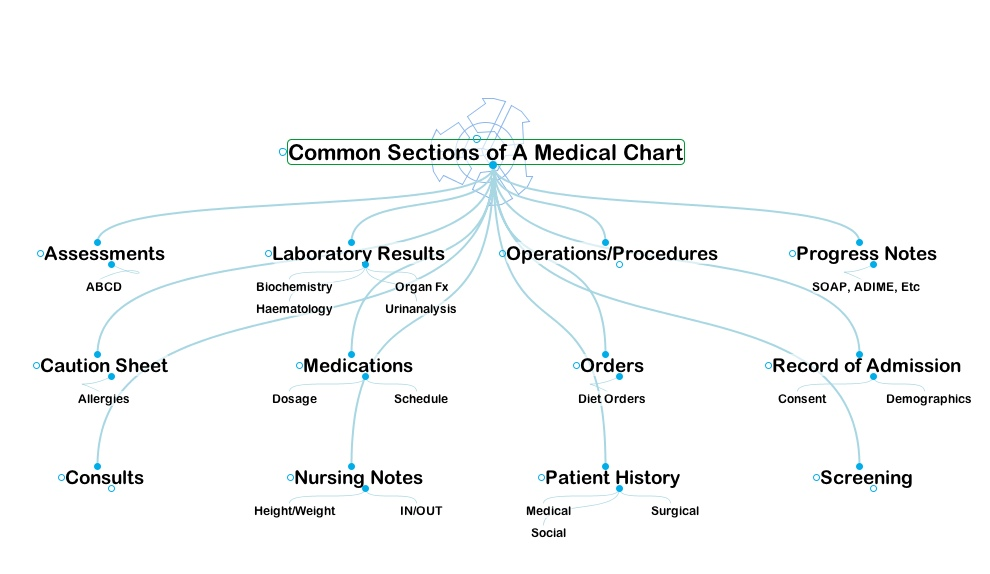 Concept map showing the major areas of a medical chart