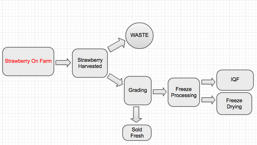 Coursefnh2002011w team13 strawberry ubc wiki flowchart of strawberry processing ccuart Images