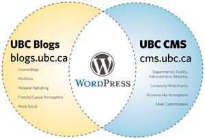 11-09-01-UBC-Wordpress-Services.png