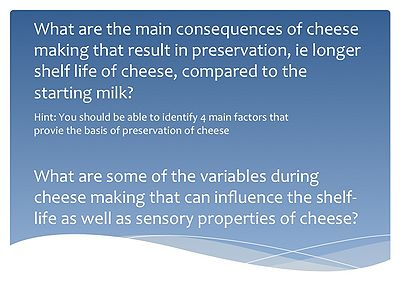 FNH200 Lesson09 CheeseQuestions.jpg